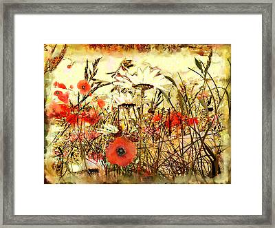 Poppies In Waving Corn Framed Print by Anne Weirich