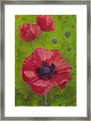 Poppies Framed Print by Laurel Ellis