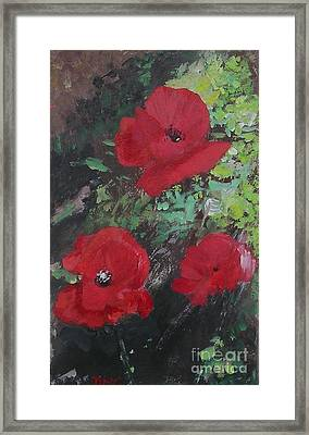 Poppies  Framed Print by Lizzy Forrester