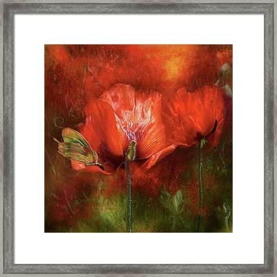 Poppies Of Summer Framed Print by Carol Cavalaris