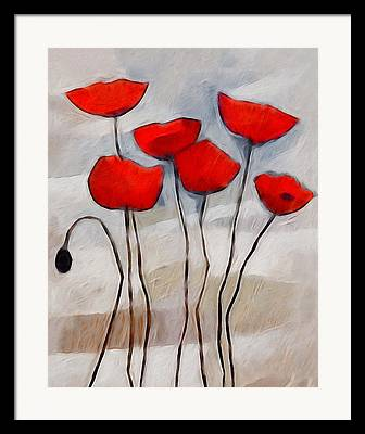 Poppies Graphics Framed Prints