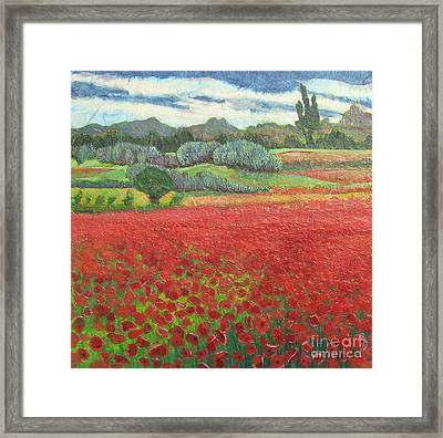 Poppies Framed Print by Pamela Iris Harden