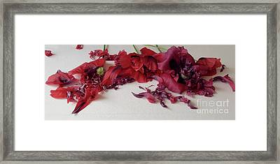 Poppies Petals Framed Print