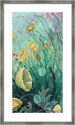 Poppies Framed Print by Sandy Clift