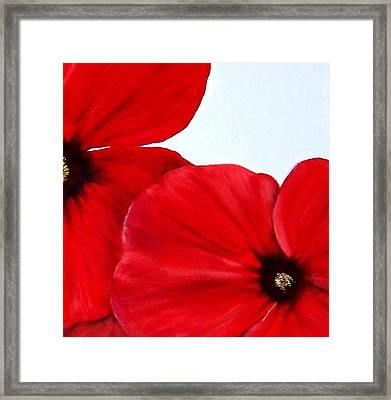 Poppy 2 Framed Print by Penny Everhart
