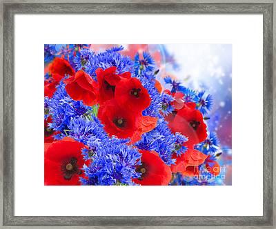 Poppy And Cornflower Flowers Framed Print