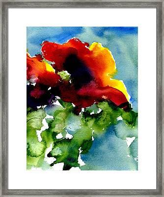 Poppy Framed Print by Anne Duke