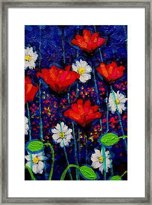 Poppy Cluster II Framed Print by John  Nolan