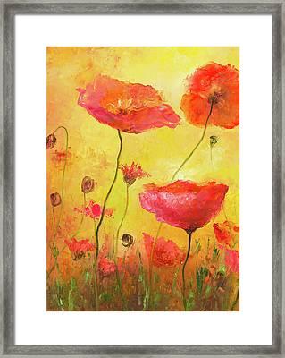 Poppy Delight Framed Print by Jan Matson