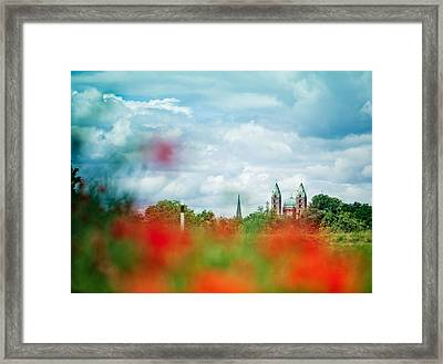 Poppy Field And Speyer Cathedral Framed Print