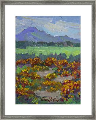 Poppy Field At Fort Apache Indian Reservation Framed Print by Diane McClary