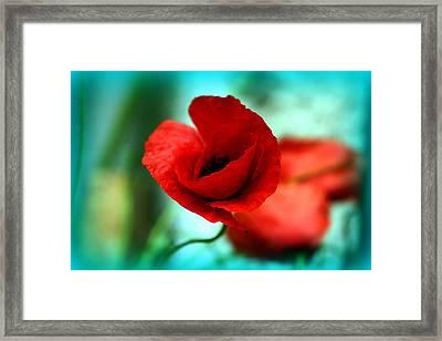 Poppy Flower Framed Print by Emanuel Tanjala