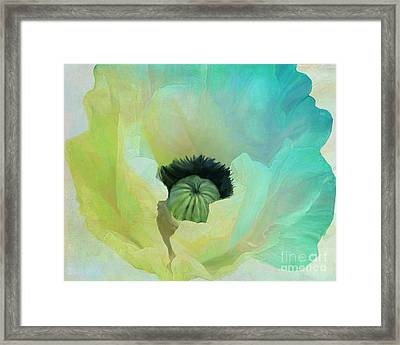 Poppy Gradient Aqua Framed Print