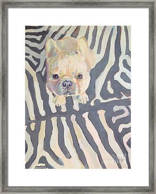 Poppy Gray Framed Print by Kimberly Santini