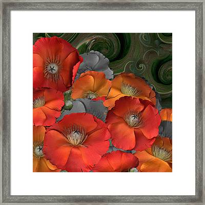 Poppy Framed Print by Stan Bowman
