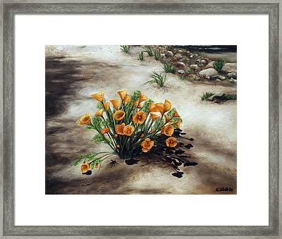 Poppy Oasis Framed Print by Kathy Shute