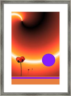 Poppy Sunset Framed Print by Tina Hariu