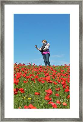Poppy Triptych Panel 3 Framed Print by Terri Waters