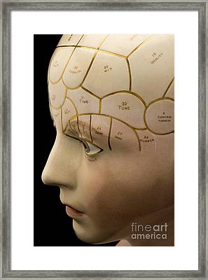 Porcelain Phrenological Head, 19th Framed Print by Wellcome Images
