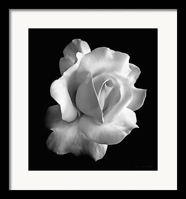 Background White Framed Prints