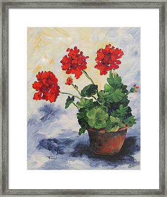 Porch Geraniums Framed Print