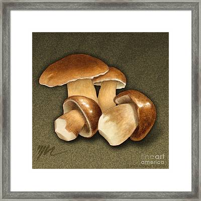 Porcini Mushrooms Framed Print