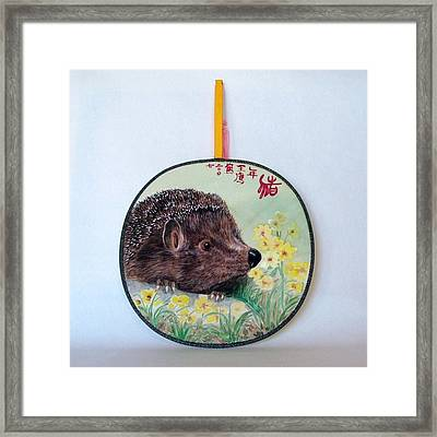 Porcupine Framed Print by Ying Wong