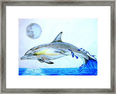 Framed Print featuring the drawing Porpoise by Mayhem Mediums
