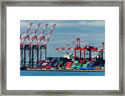 Port Newark Container Terminal Framed Print