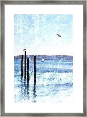 Port Townsend Pilings Framed Print