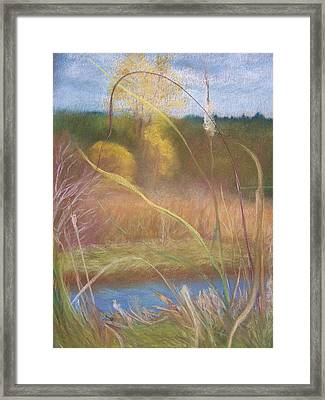 Portal Framed Print by Jackie Bush-Turner
