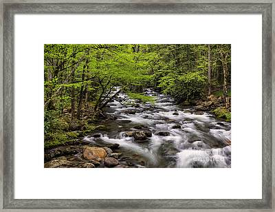 Porters Creek Framed Print by Madonna Martin