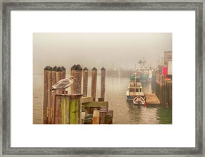 Portland Harbor Morning Framed Print