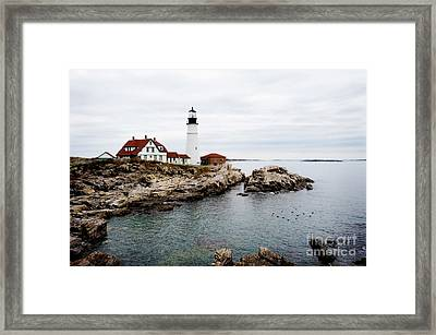 Portland Light Framed Print by Jim  Calarese