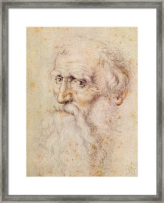 Portrait Of A Bearded Old Man Framed Print