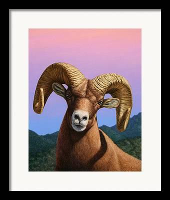Aries Framed Prints