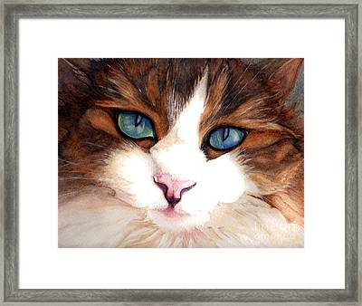 Portrait Of A Cat Framed Print by Janine Riley