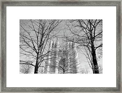Portrait Of A Cathedral Framed Print