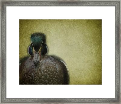 Portrait Of A Duck Framed Print by Rebecca Cozart