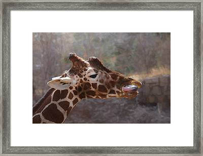 Framed Print featuring the digital art Portrait Of A Giraffe by Ernie Echols