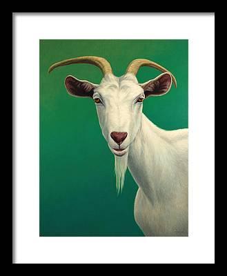 Farm Animals Framed Prints