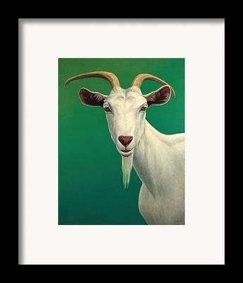 Goat Framed Prints
