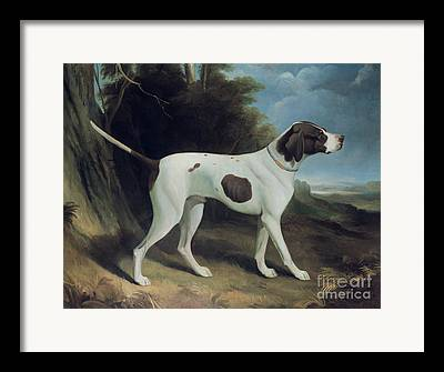 Working Dogs Framed Prints