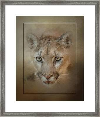 Portrait Of A Mountain Lion Framed Print