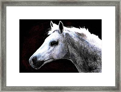Portrait Of A Pale Horse Framed Print by Angela Davies