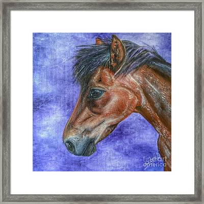 Portrait Of A Pony Framed Print