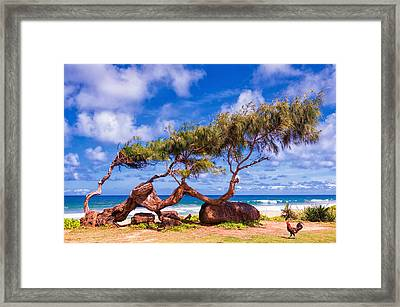 Portrait Of A Rooster Framed Print by Aron Kearney
