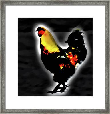 Portrait Of A Rooster Framed Print