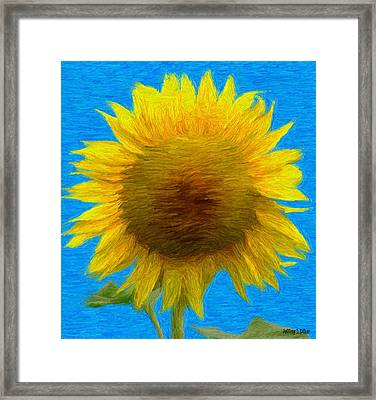 Portrait Of A Sunflower Framed Print by Jeff Kolker