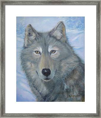 Portrait Of A Wolf Framed Print